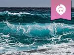 Ocean marine thumbnail